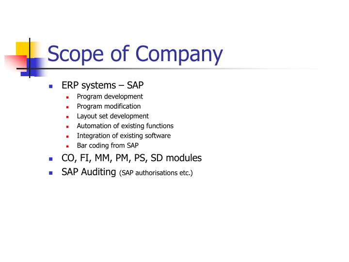 Scope of company