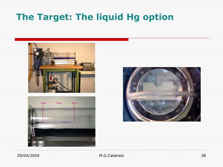 The Target: The liquid Hg option