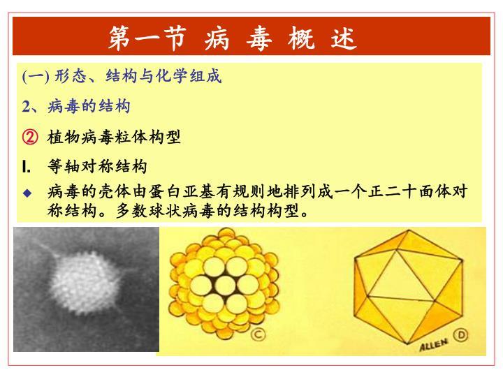 第一节 病 毒 概 述