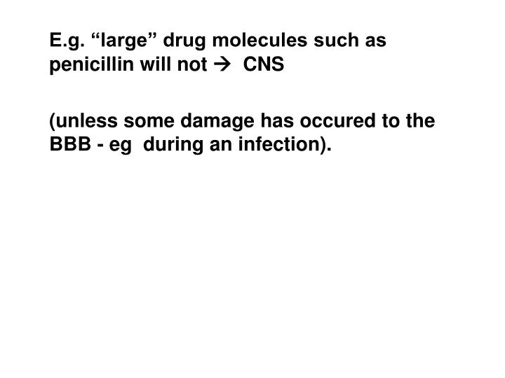 "E.g. ""large"" drug molecules such as penicillin will not"