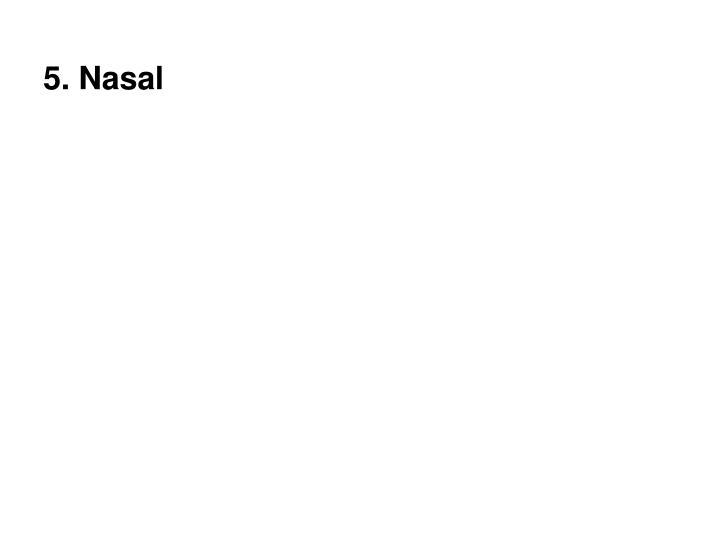5. Nasal