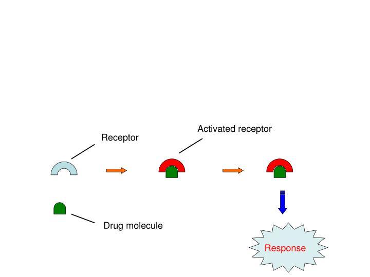 Activated receptor