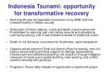 indonesia tsunami opportunity for transformative recovery