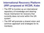international recovery platform irp proposed at wcdr kobe