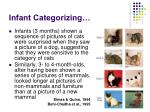 infant categorizing