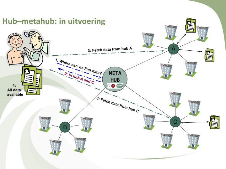 Hub–metahub: in uitvoering