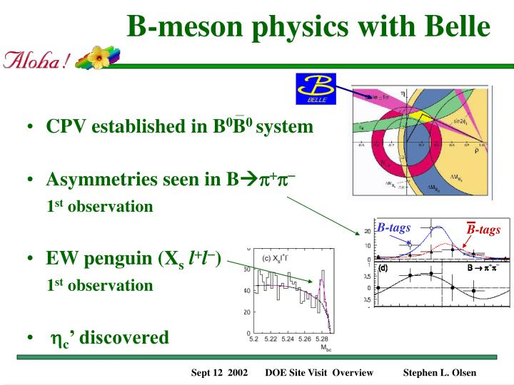 B-meson physics with Belle