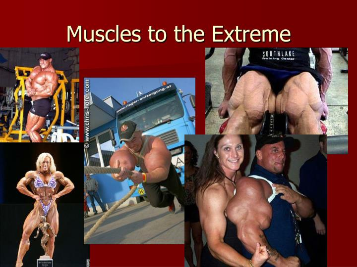 Muscles to the Extreme