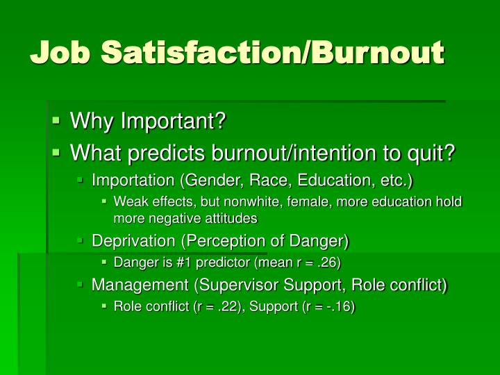 Job Satisfaction/Burnout