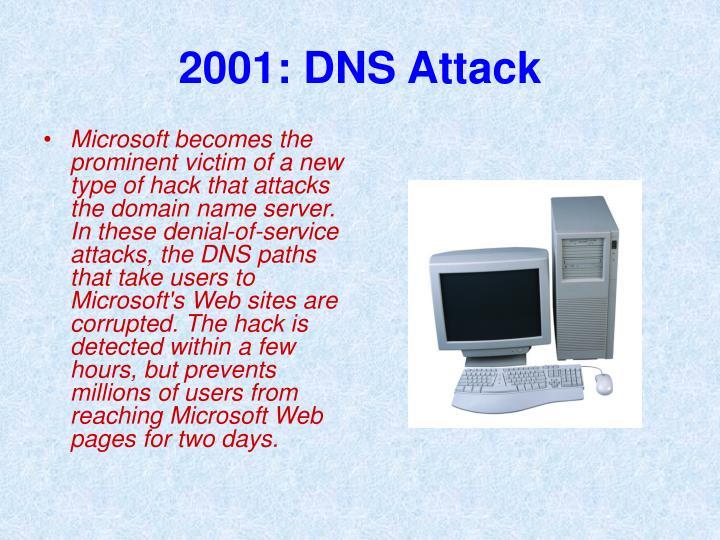 2001: DNS Attack