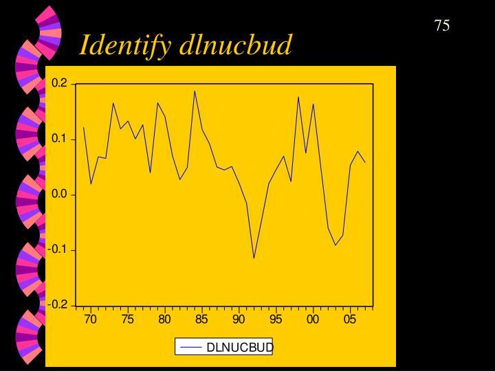 Identify dlnucbud