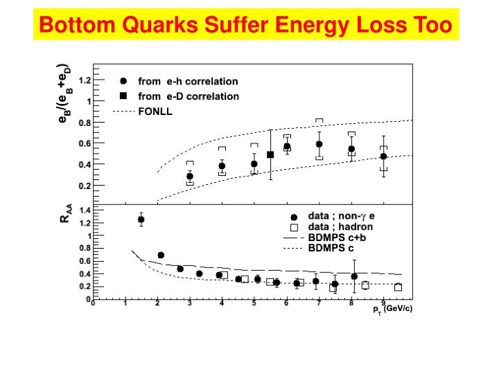 Bottom Quarks Suffer Energy Loss Too