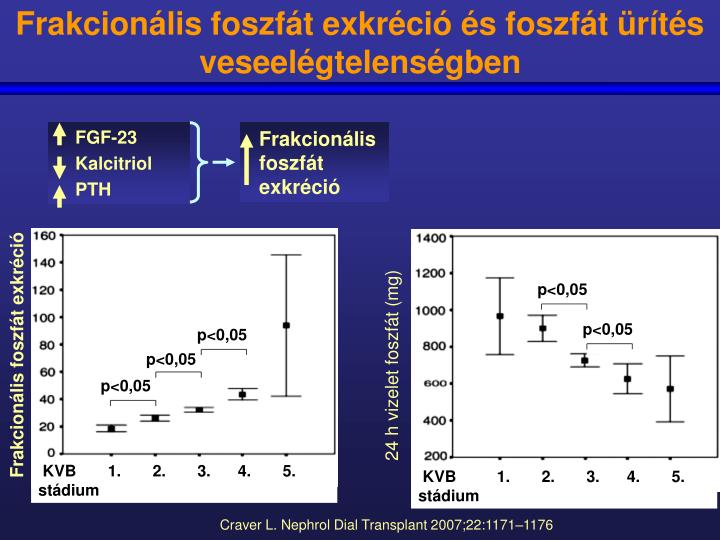 Frakcionális foszfát exkréció és foszfát ürítés veseelégtelenségben