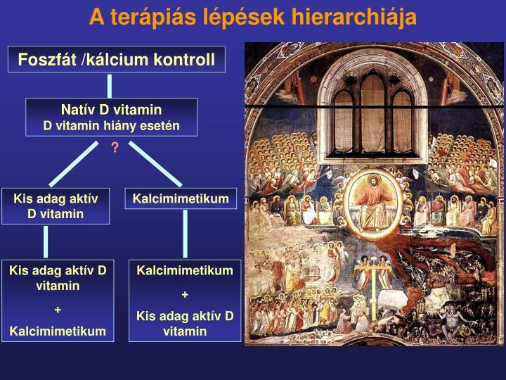 A terápiás lépések hierarchiája