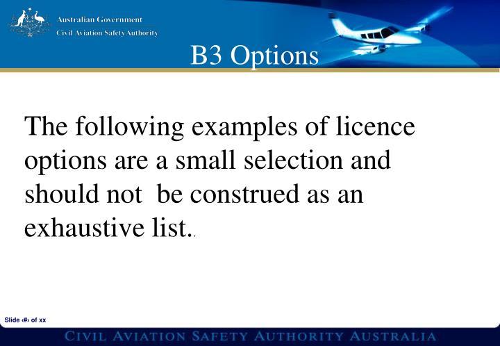 B3 Options