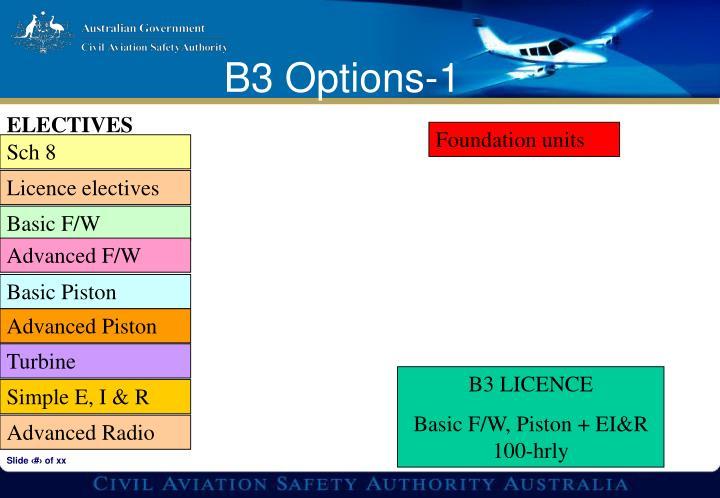 B3 Options-1