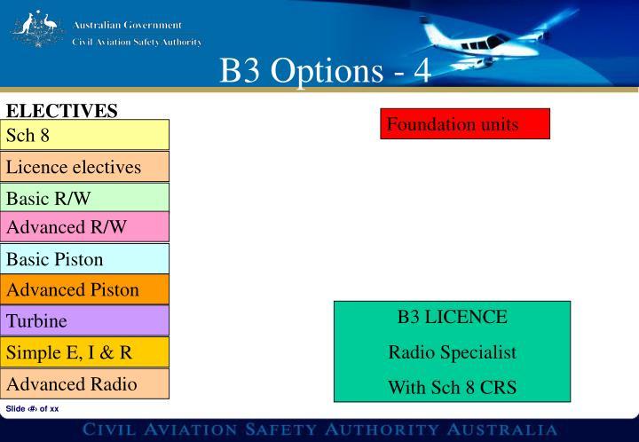 B3 Options - 4