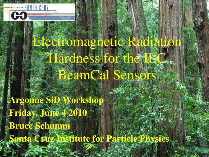 Electromagnetic Radiation Hardness for the ILC BeamCal Sensors