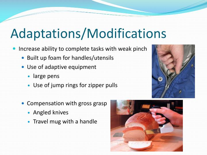 Adaptations/Modifications