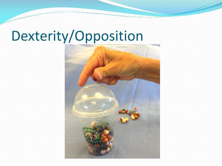 Dexterity/Opposition