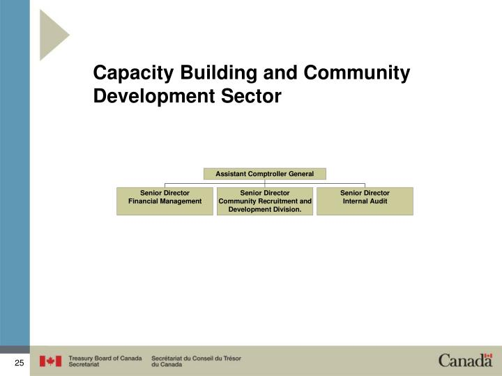 Capacity Building and Community Development Sector