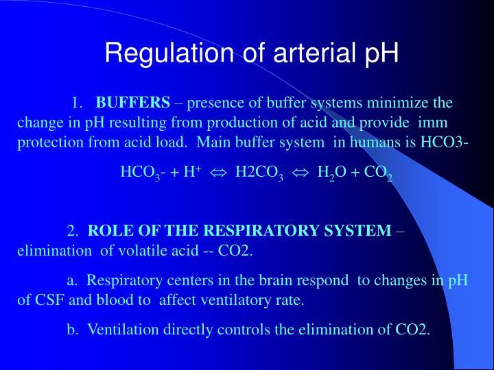 Regulation of arterial pH
