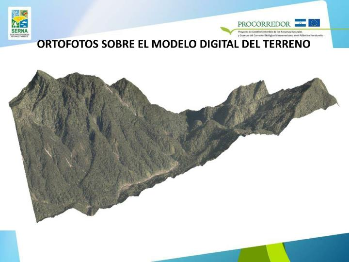 ORTOFOTOS SOBRE EL MODELO DIGITAL DEL TERRENO