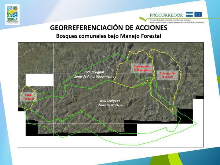 GEORREFERENCIACIÓN DE ACCIONES