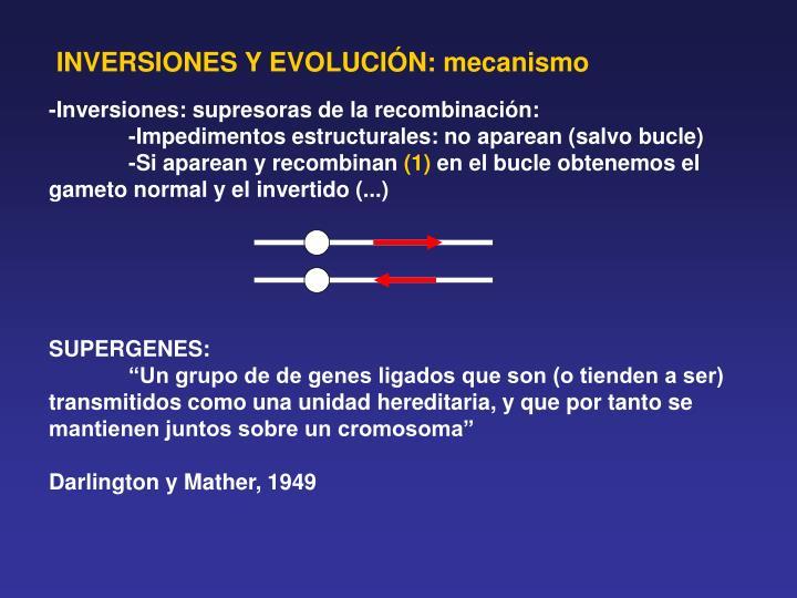 INVERSIONES Y EVOLUCIÓN: mecanismo