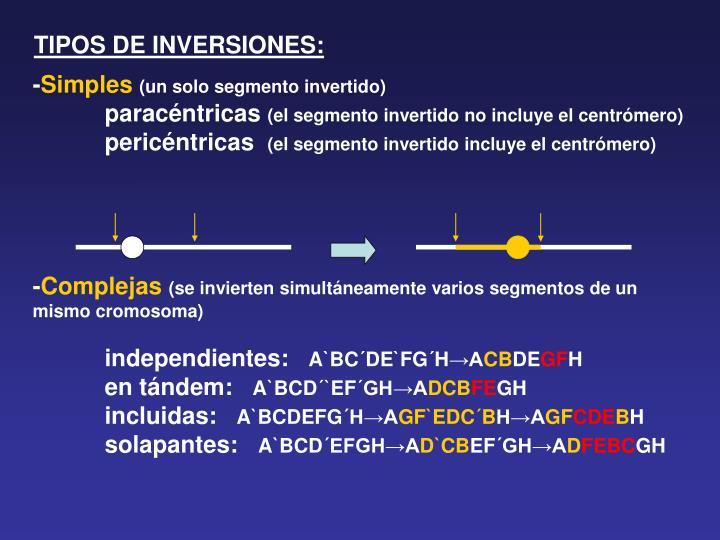 TIPOS DE INVERSIONES: