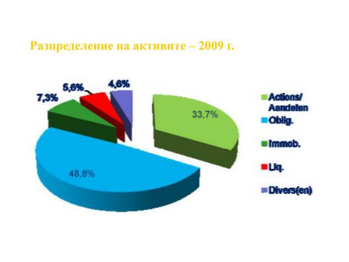 Разпределение на активите – 2009 г.
