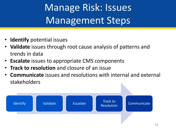 Manage Risk: Issues