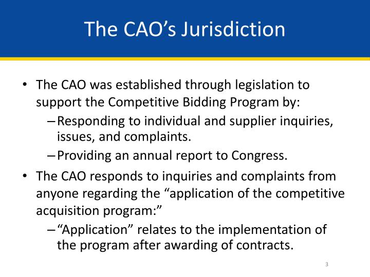 The CAO's Jurisdiction