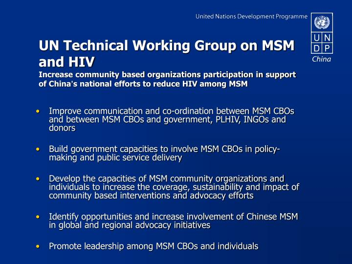 UN Technical Working Group on MSM