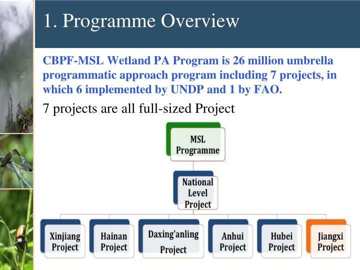 1. Programme Overview