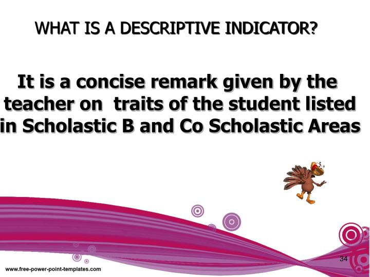 WHAT IS A DESCRIPTIVE INDICATOR?