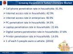 growing dynamism in turkey s domestic market