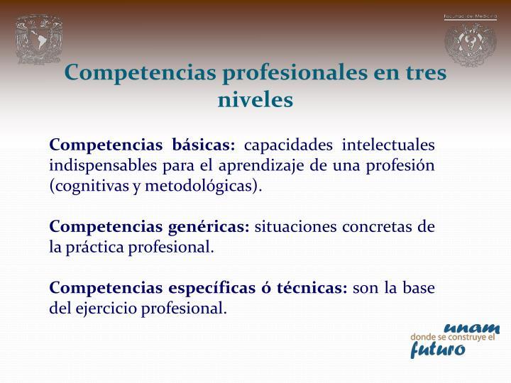 Competencias profesionales en tres niveles