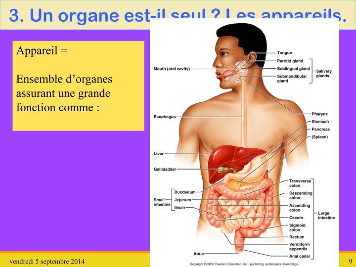 3. Un organe est-il seul ? Les appareils.