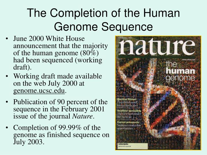 The Completion of the Human Genome Sequence