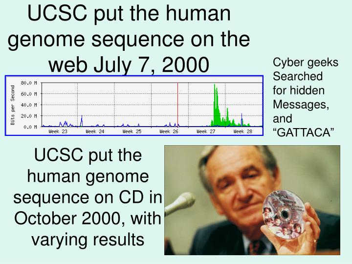 UCSC put the human genome sequence on the web July 7, 2000