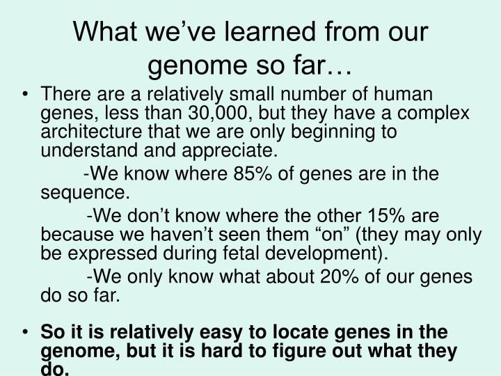 What we've learned from our genome so far…