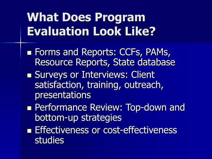 What Does Program Evaluation Look Like?