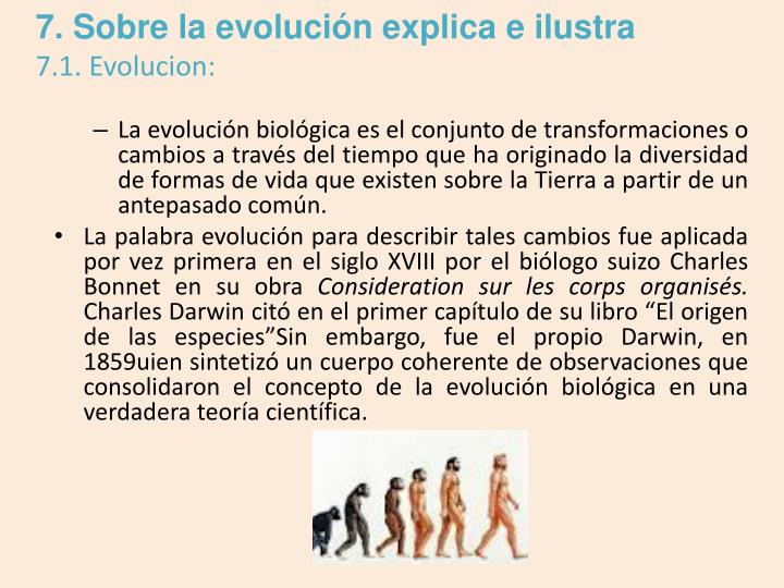 7. Sobre la evolución explica e ilustra