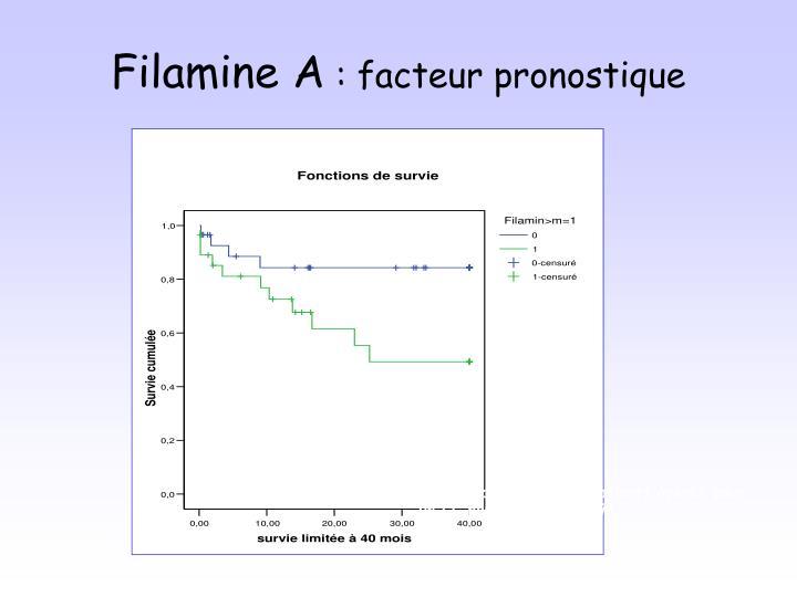 Filamine A
