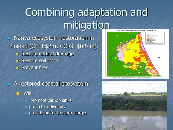 Combining adaptation and mitigation