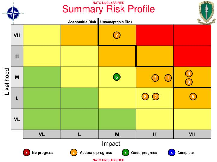 Summary Risk Profile