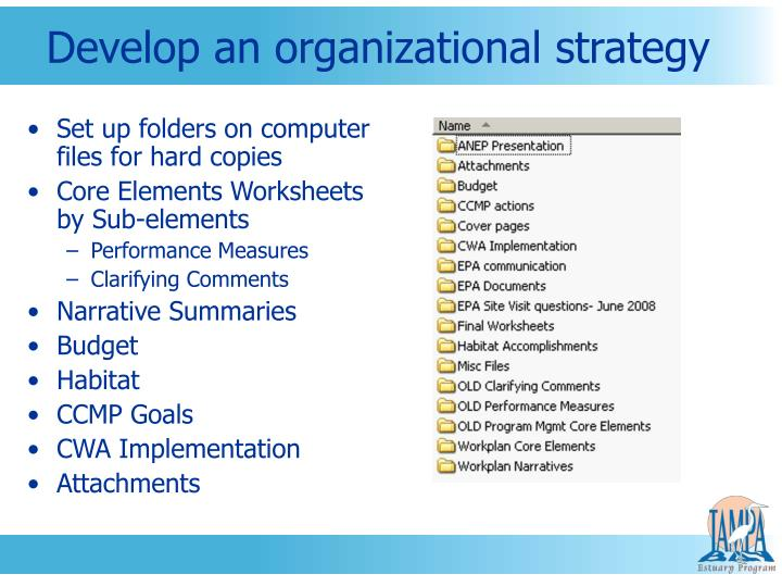 Develop an organizational strategy
