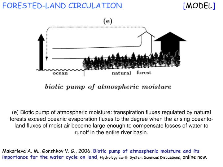 FORESTED-LAND CIRCULATION