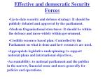 effective and democratic security forces